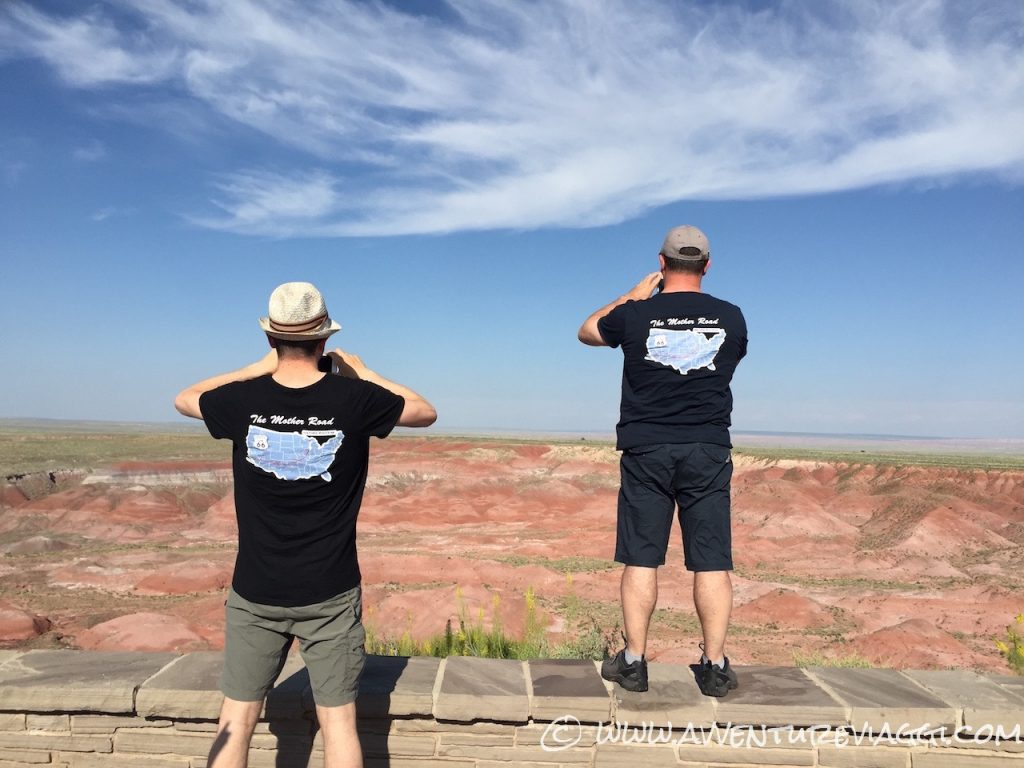 pics on the petrified forest