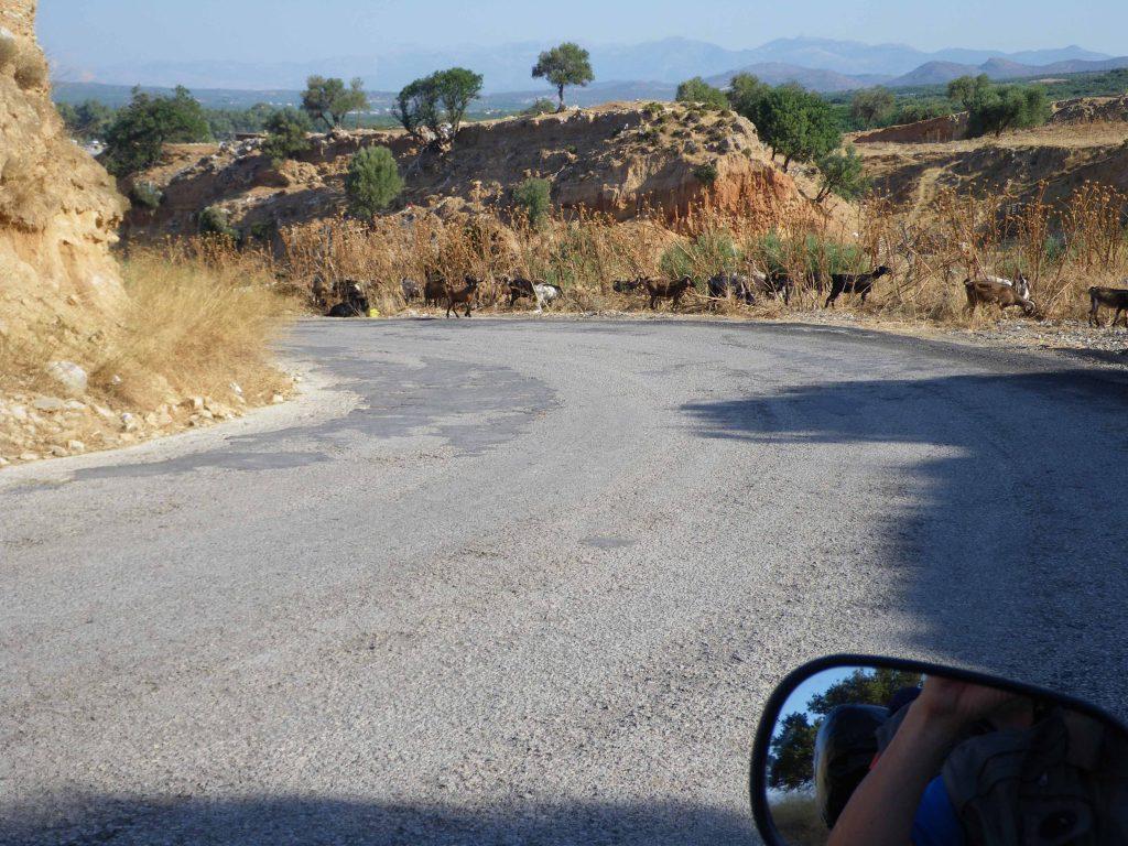 Peloponneso ostacoli in carreggiata