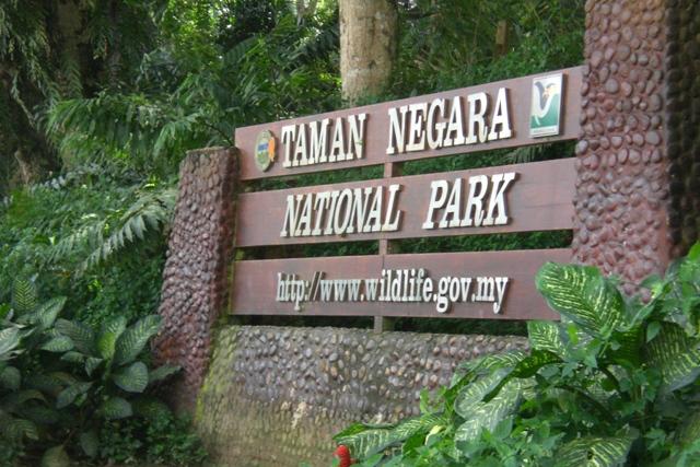 Taman Negara National Park