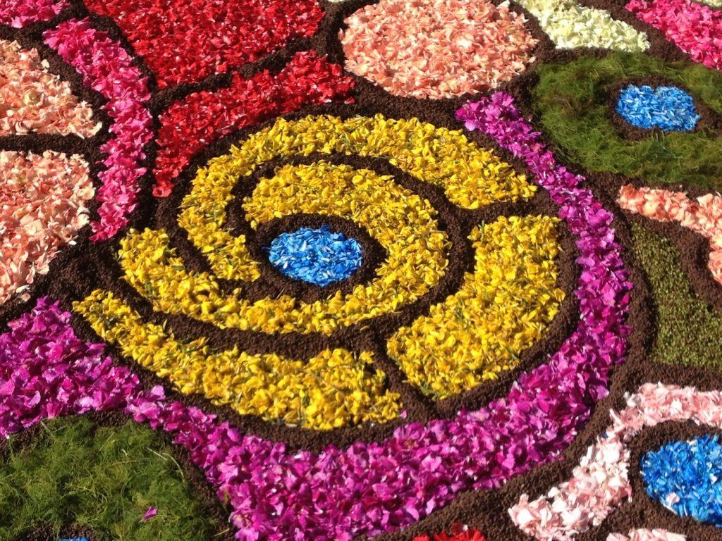 disegni con petali di fiore