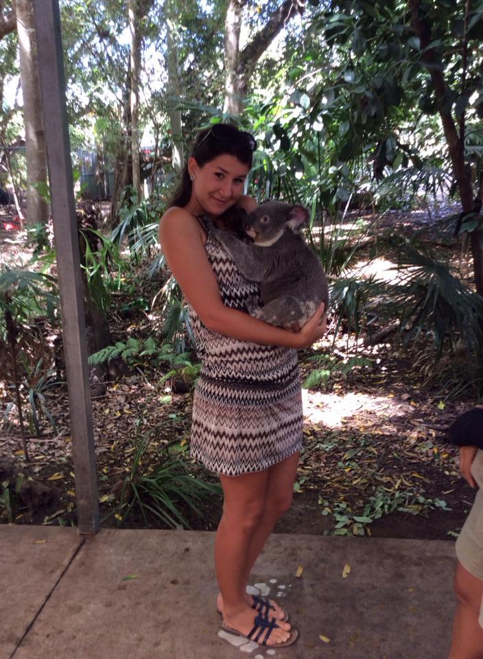 Abbraccio Koala