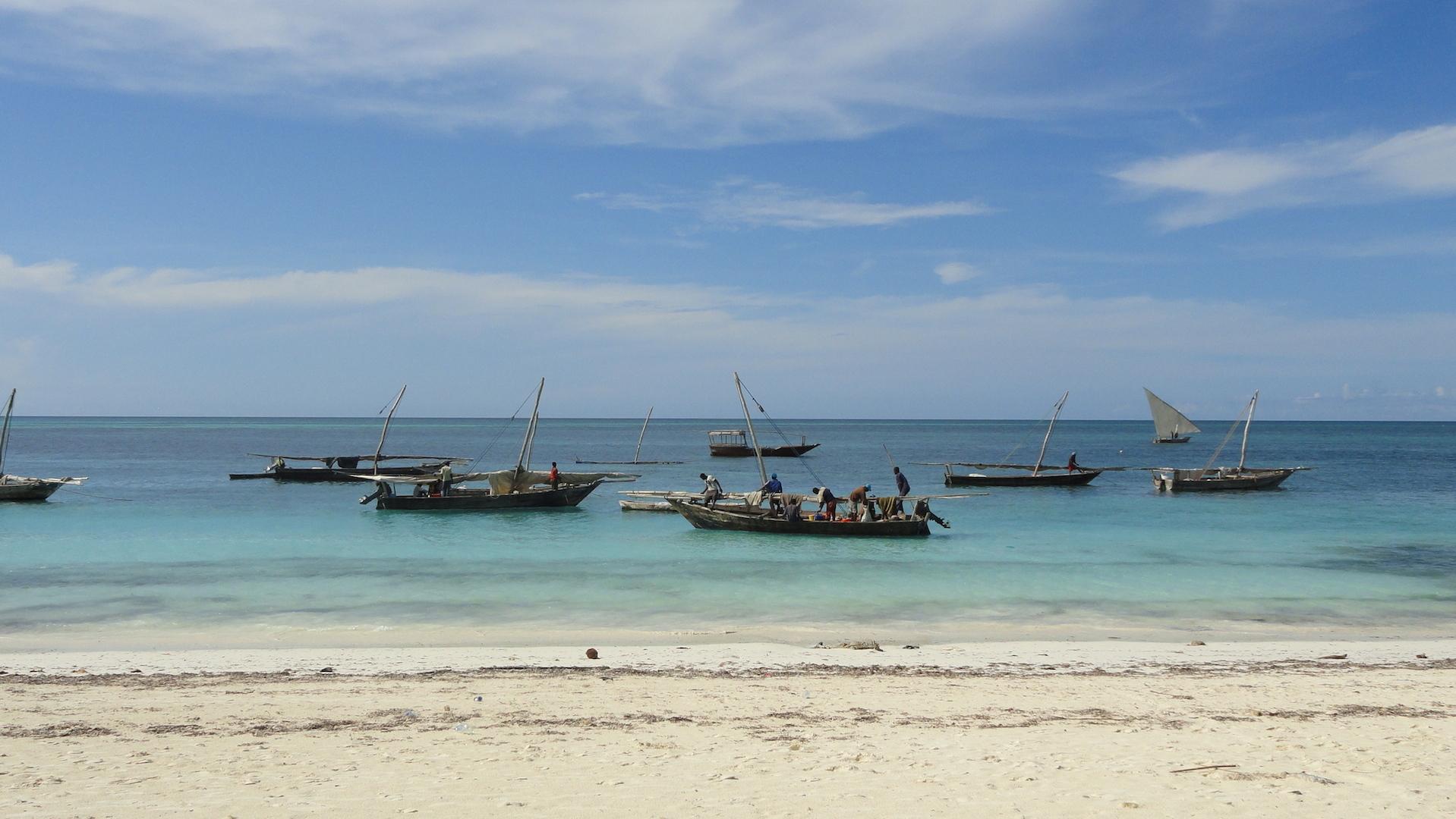 Zanzibar di terra la periferia avventure viaggi - Zanzibar medicine da portare ...
