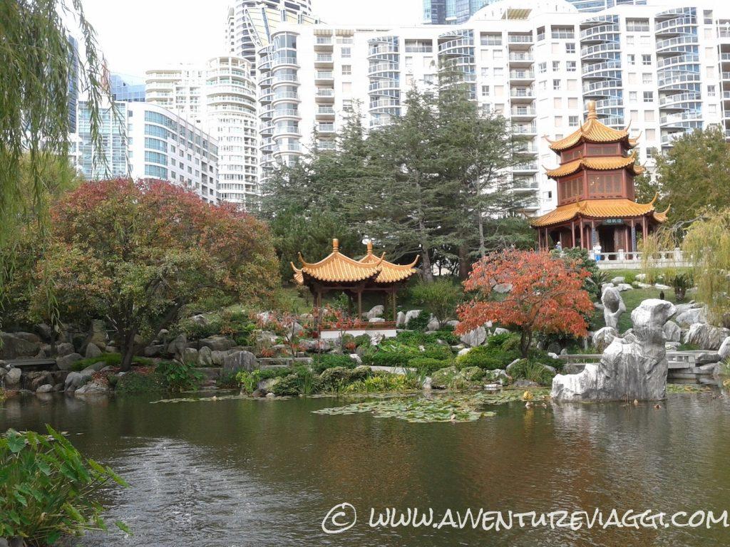 giardino cinese Sidney