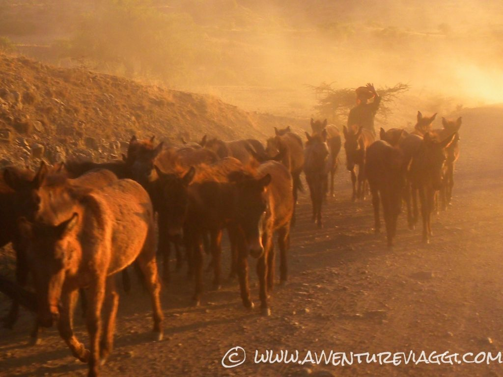 traffico in etiopia