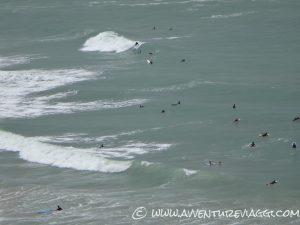 Surf in attesa dell'onda giusta