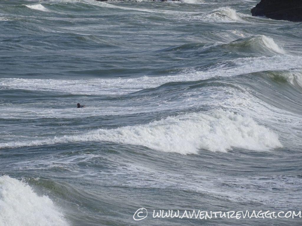 surf sfida il mare di biarritz