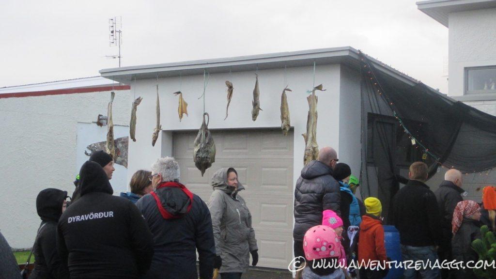 Fish Islanda